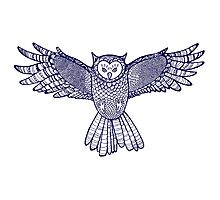 Flying ornamented owl.  Photographic Print