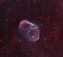 "NGC6888 ""Crescent"" or ""Medusa"" nebula. by Igor Chekalin"