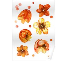 Watercolor isolated tulips and red watercolor splashes.  Poster