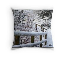 The Cold Walk Throw Pillow