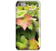 Leaves of Rockhampton Qld Australia iPhone Case/Skin