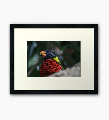Blue, Yellow, And Red Framed Print
