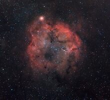 Mu Cephei supergiant star, and IC1396 emission nebula. by Igor Chekalin