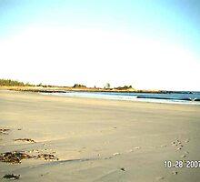 NOVA SCOTIA BEACH MEADOWS by dreamer1956