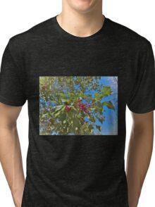 Summer Holly Tri-blend T-Shirt