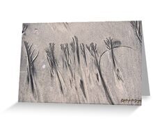 Sand Etchings Greeting Card