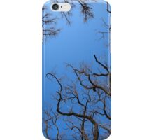 Dead trees in the environmental catastrophe iPhone Case/Skin