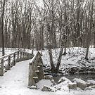 The Bridge to a Wintery World by sternbergimages
