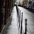 paris street by rapsag