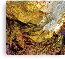 Nature's Art Canvas II Canvas Print