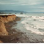 Gray California Coast - Crescent City California by Lawson Jacobs
