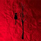 black cat on tree by studenna