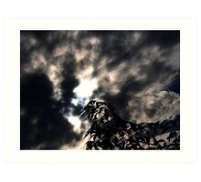 i see the sun,do you? Art Print