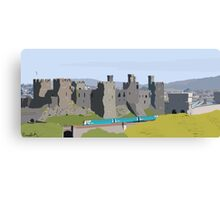 Conwy in Full Bloom Canvas Print