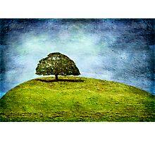 The Gathering Tree Photographic Print