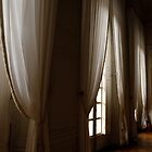 curtains versailles by rapsag