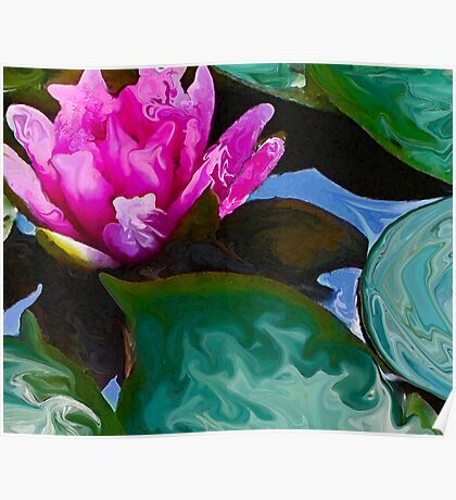 lily of a far different pond Poster