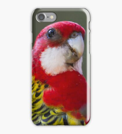 Where's The Sunflower Seeds? iPhone Case/Skin