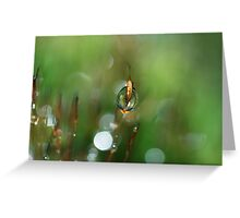 Emerald Glow Greeting Card