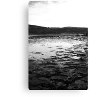 Ice Sheets Canvas Print