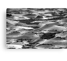 Ice Sheets 2 Canvas Print