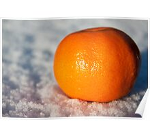 Orange on snow Poster