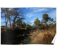 Cow Creek Poster