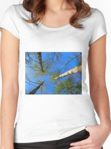 Birch trees on the background of the spring sky Women's Fitted Scoop T-Shirt