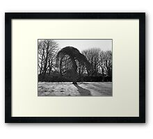 Tree In A Freeze Framed Print