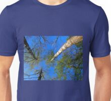 Three birch trees on the background of the sky Unisex T-Shirt