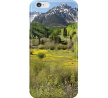 Spring Greens iPhone Case/Skin