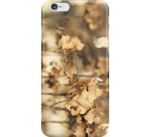 Hibernating Beautifully iPhone Case/Skin