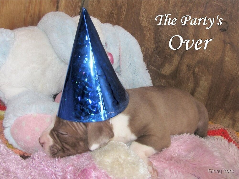 The Party's Over by Ginny York
