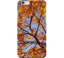 Red Maple in Fall iPhone Case/Skin