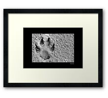 Canine Signature Framed Print
