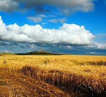 a wonderful Kazakhstan landscape by beautifulscenes