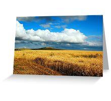 a wonderful Kazakhstan landscape Greeting Card