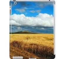 a wonderful Kazakhstan landscape iPad Case/Skin