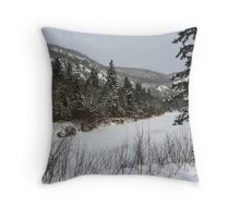 Ontario winter Throw Pillow