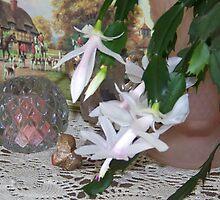 My Cottage Treasures by © Betty E Duncan ~ Blue Mountain Blessings Photography