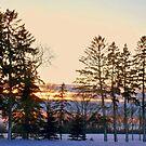 Cold Winter's Night by Diane Trummer Sullivan