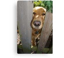 Sweet Puppy Poopsie Canvas Print