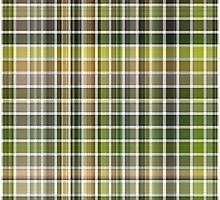 Cactus Garden Plaid 2 by Christopher Johnson