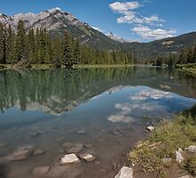 Bow River Reflections by Kristin Repsher