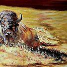 Prairie Colors by Susan Bergstrom