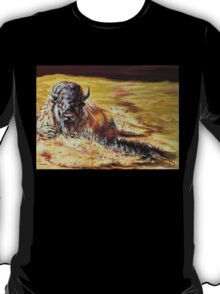 Prairie Colors T-Shirt