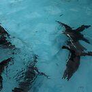 Under water: flying by Marjolein Katsma