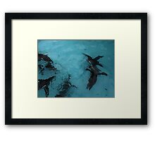Under water: flying Framed Print