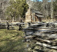 (Cades Cove) Cabin and Rail Fence by Terence Russell