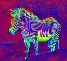neon zebra by jashumbert